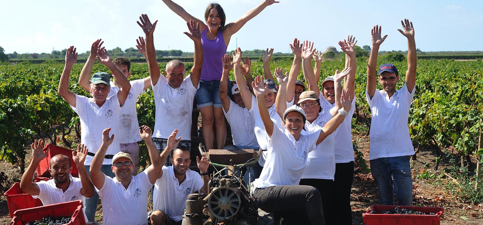 Masseria jorche frantoio 0000 Vigneto jorche20